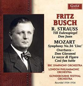 Richard Strauss - Till Eulenspiegels lustige Streiche (DVD)