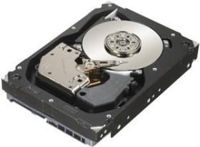 Seagate Cheetah 15K.7 600GB, SAS 6Gb/s (ST3600057SS)