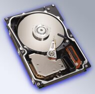 Seagate Cheetah 10K.6 37GB, U320-SCA (ST336607LC)