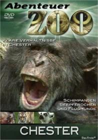 Abenteuer Zoo - Chester