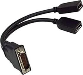 PNY DS-59M Adapter, DS-59M Stecker auf 2x DisplayPort Buchse (QSP-DMS59DP)