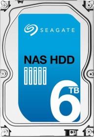 Seagate NAS HDD +Rescue 6TB, SATA 6Gb/s (ST6000VN0031)