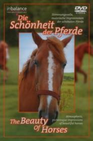 Die Schönheit der Pferde