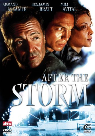 After the Storm -- via Amazon Partnerprogramm