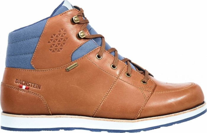 Dachstein Hubert GTX brown (men)