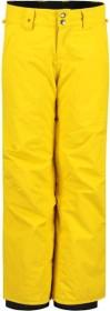 Quiksilver Estate Snowboardhose sulphur (Junior) (EQBTP03026-gjc0)