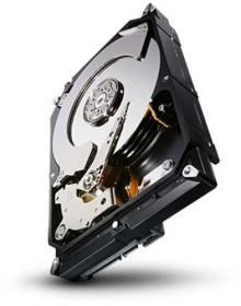 Seagate Terascale 4TB, ISE, SATA 6Gb/s (ST4000NC000)