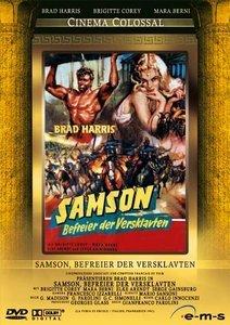 Samson, Befreier der Versklavten