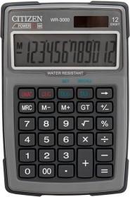 Citizen WR3000-GY grey (7238082)