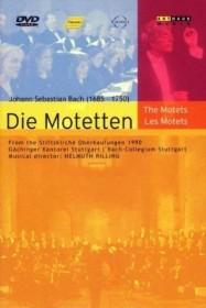 Johann Sebastian Bach - Die Motetten (DVD)
