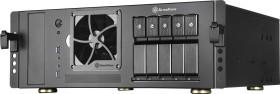 SilverStone Case Storage CS350 silver (SST-CS350B/71127)