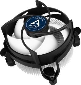 Arctic Alpine 12 (ACALP00027A)