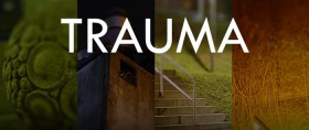 Trauma - Collector's Edition (PC)