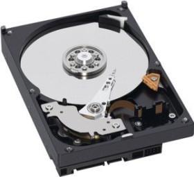 Western Digital WD Caviar Green 640GB, 64MB Cache, SATA 3Gb/s (WD6400AARS)