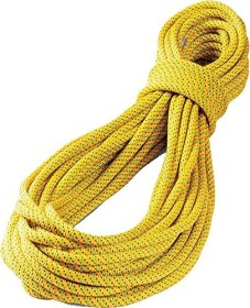 Tendon Ambition 9.8mm single rope (various types)