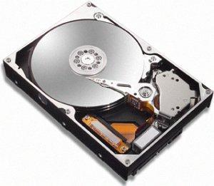 Maxtor MaXLine III 300GB, IDE (7B300R0/7L300R0)
