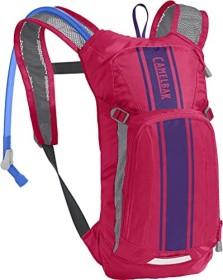 CamelBak Mini M.U.L.E. 50 OZ Trinkrucksack hot pink/purple stripe (Junior) (1155603000)