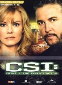 CSI Season 7.1
