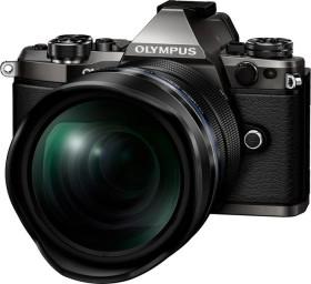 Olympus OM-D E-M5 Mark II titan Limited Edition Gehäuse (V207040TE000)