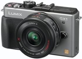 Panasonic Lumix DMC-GX1 silber Gehäuse
