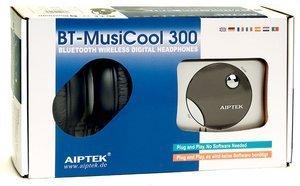 Aiptek Bluetooth MusiCool 300, Klinke