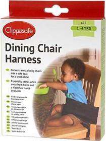 Clippasafe Wrist Link child protection belt