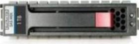 HP P2000 1TB 6G SAS 7.2K LFF DP MDL HDD (AP861A)