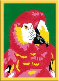 Ravensburger Malen nach Zahlen Papagei (29583)