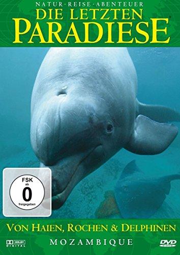 Die letzten Paradiese Vol. 26: Mosambik - Von Haien, Rochen und Delfinen -- via Amazon Partnerprogramm