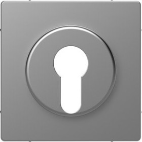 Merten System Design Zentralplatte, edelstahl (MEG3886-6036)