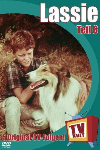 Lassie 6 -- via Amazon Partnerprogramm