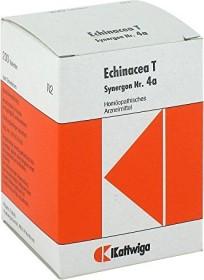 Synergon Nr. 4a Echinacea T Tabletten, 200 Stück