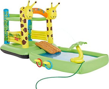 Wehncke Giraffe Pool -- via Amazon Partnerprogramm