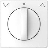 Merten System Design Zentralplatte, lotosweiß (MEG3875-6035)