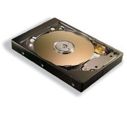 Maxtor Fireball 3 40GB FDB, IDE (2F040L0)