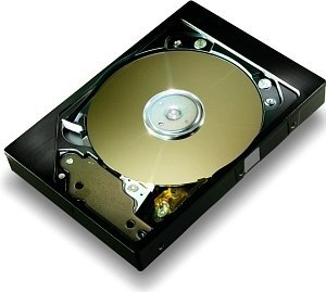 Maxtor DiamondMax Plus 8    40GB, IDE (6E040L0/6K040L0)