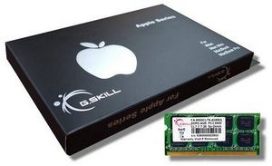 G.Skill SO-DIMM 4GB PC3-8500S CL7-7-7-20 (DDR3-1066) (FA-8500CL7S-4GBSQ)