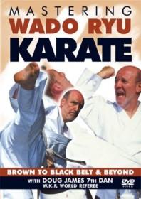 Kampfsport Karate: Wado Ryu Karate