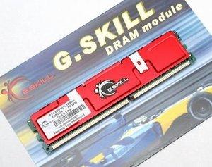 G.Skill NS Series DIMM 1GB, DDR-400, CL2.5-3-3-6 (F1-3200PHU1-1GBNS)