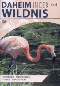 Daheim in der Wildnis Vol. 6