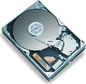 Maxtor DiamondMax Plus 9 80GB, SATA (6Y080M0)