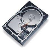 Maxtor Atlas 15K 18GB U320-LVD (8C018L0)