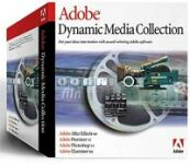 Adobe: Digital Video Collection 5.0 (angielski) (PC) (29210046)
