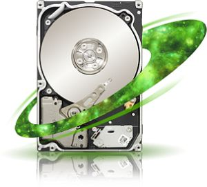 Seagate Constellation 7200.2 SED 1000GB, SATA 6Gb/s (ST91000641NS)