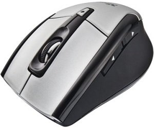 Trust Qanto wireless Laser Mouse, USB (17361)