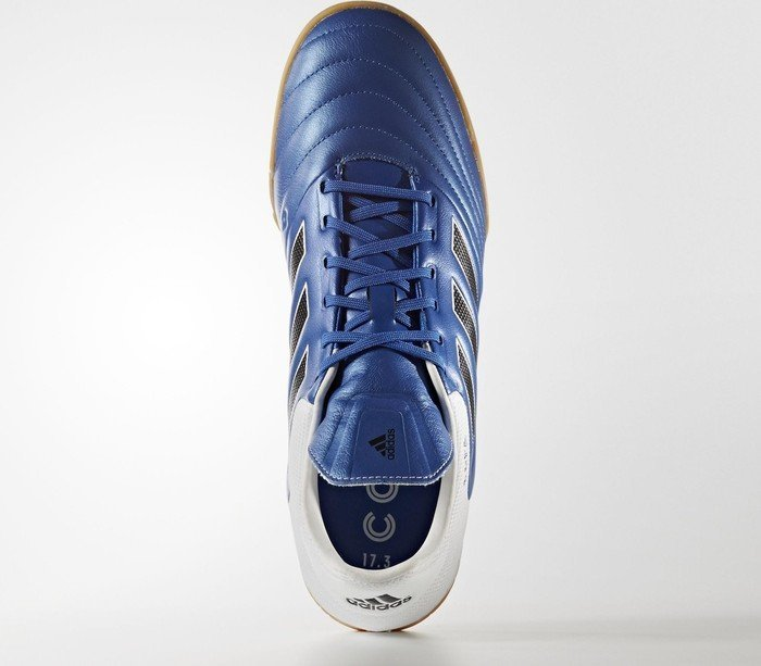 45ac1f99ce06 adidas Copa 17.3 IN blue core black footwear white (men) (BB0853) starting  from £ 46.29 (2019)