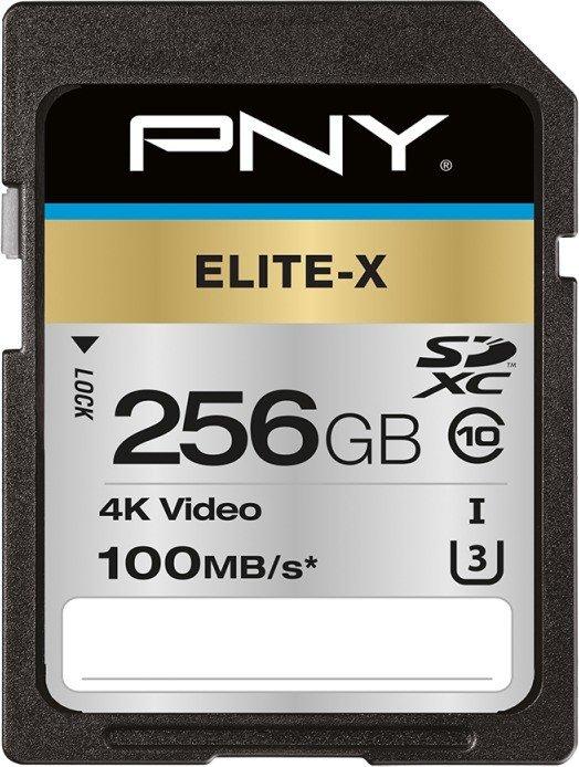 PNY Elite-X R100 SDXC 256GB, UHS-I U3, Class 10 (P-SD256U3100EX-GE)