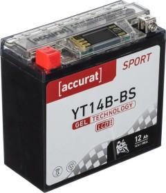 Accurat Sport GEL LCD YT14B-BS (TN3300)