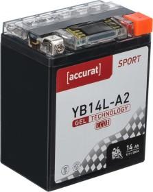 Accurat Sport GEL LCD YB14L-A2 (TN3296)