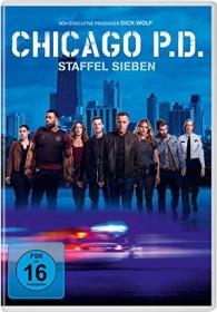 Chicago P.D. Season 5 (DVD)